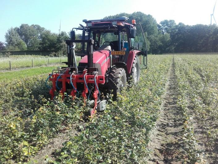 Het onkruid spuiten van uw gewassen in Brabant